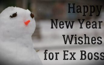 Happy New Year Wishes for Ex Boss