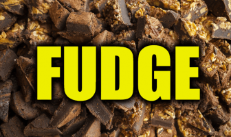 "Use Fudge in a Sentence - How to use ""Fudge"" in a sentence"