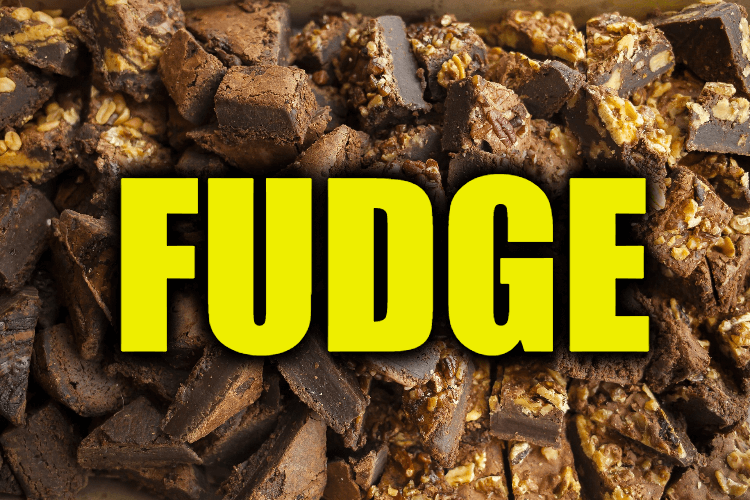 """Use Fudge in a Sentence - How to use """"Fudge"""" in a sentence"""