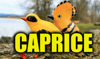 "Use Caprice in a Sentence - How to use ""Caprice"" in a sentence"