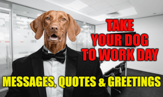 Take Your Dog To Work Day Messages, Quotes & Greetings