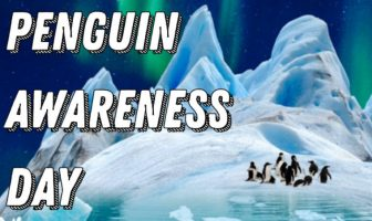 Cute Penguin Awareness Day Messages
