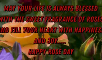 Beautiful Rose Day Messages for Friends – Rose Day Wishes