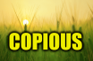 "Use Copious in a Sentence - How to use ""Copious"" in a sentence"