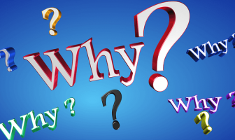 """Use Why in a Sentence - How to use """"Why"""" in a sentence"""