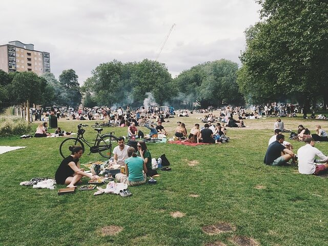 International Picnic Day Wishes Messages, Greetings and Quotes